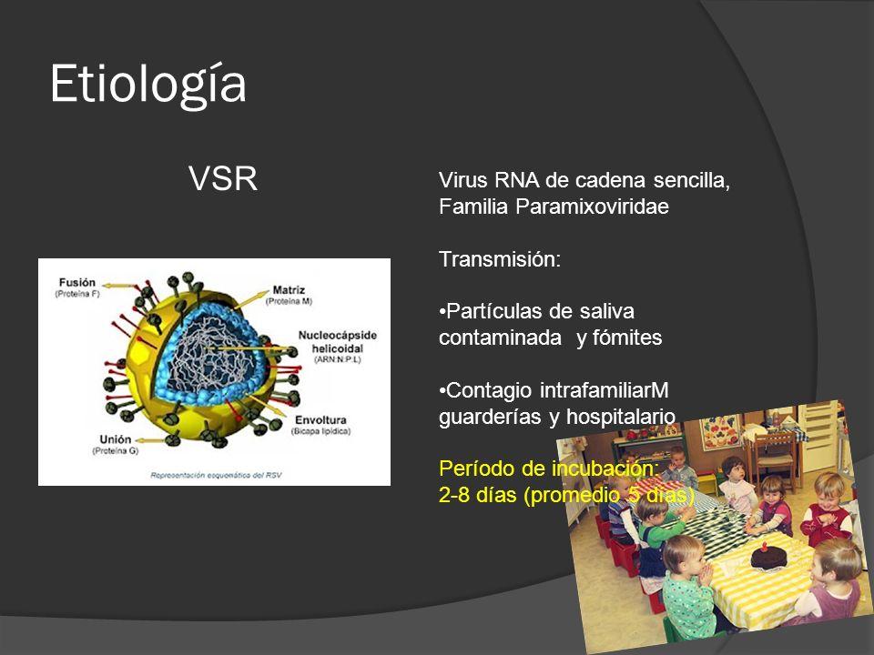 Etiología VSR Virus RNA de cadena sencilla, Familia Paramixoviridae Transmisión: Partículas de saliva contaminada y fómites Contagio intrafamiliarM gu