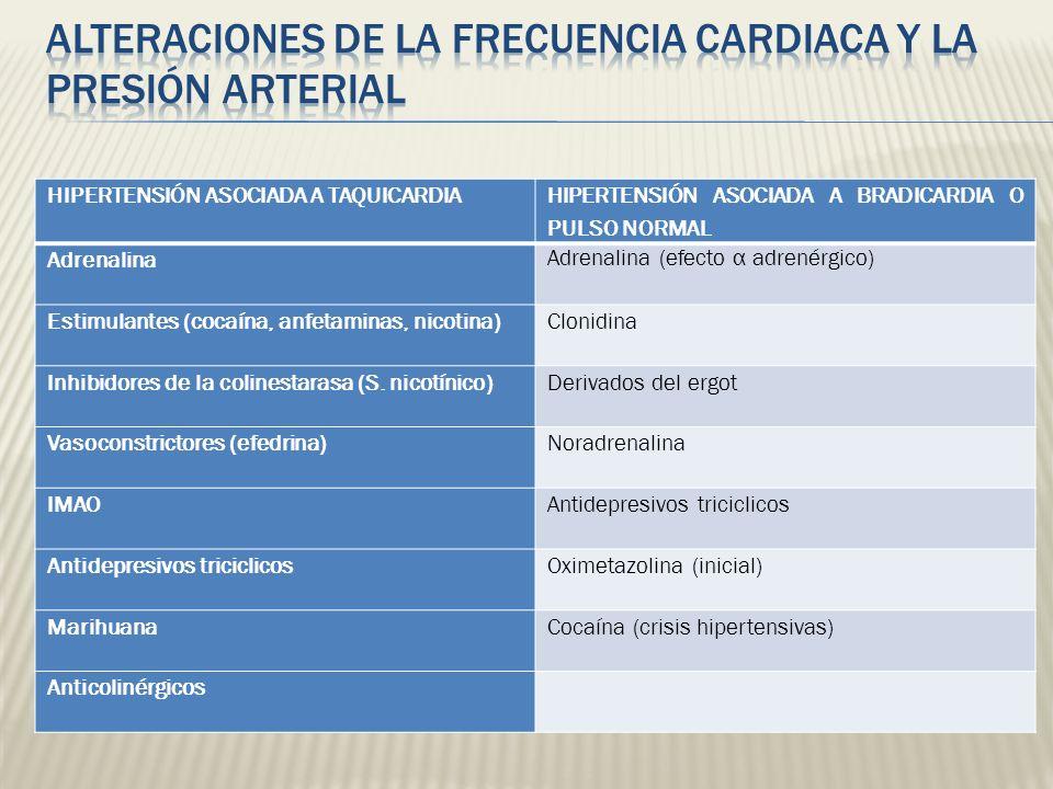 HIPERTENSIÓN ASOCIADA A TAQUICARDIA HIPERTENSIÓN ASOCIADA A BRADICARDIA O PULSO NORMAL Adrenalina Adrenalina (efecto α adrenérgico) Estimulantes (coca