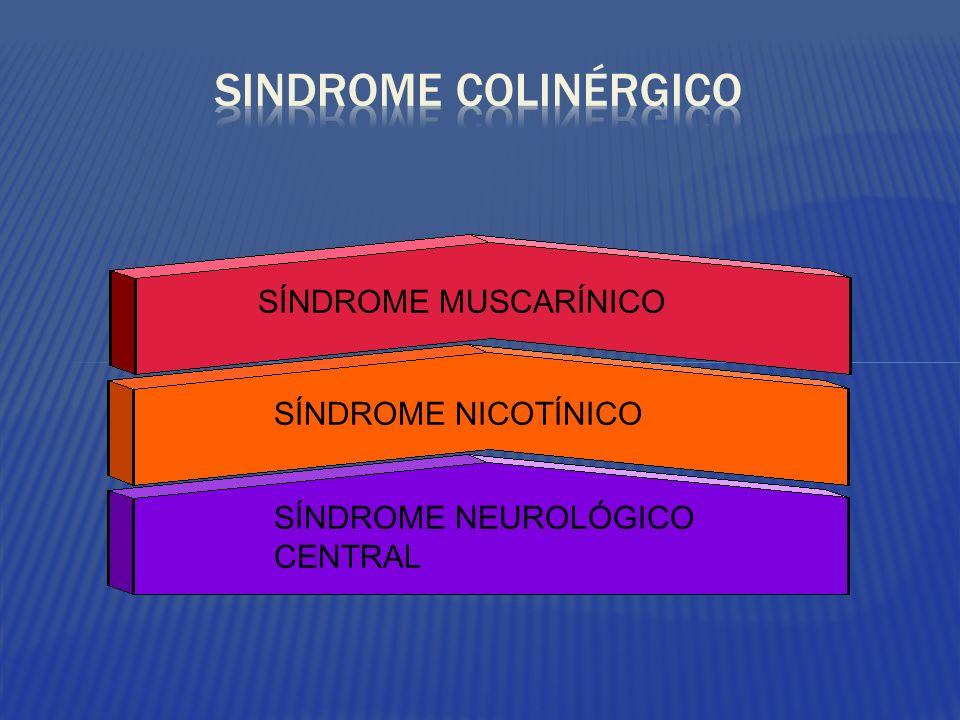 SÍNDROME MUSCARÍNICO SÍNDROME NICOTÍNICO SÍNDROME NEUROLÓGICO CENTRAL