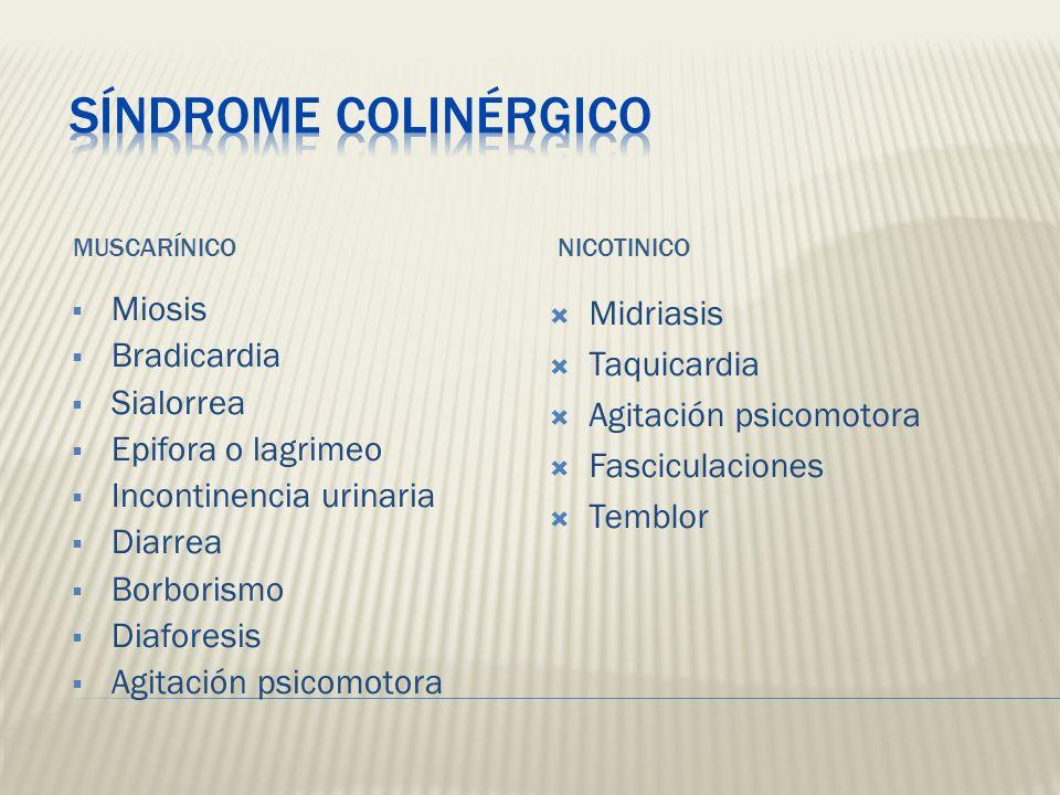 MUSCARÍNICONICOTINICO Miosis Bradicardia Sialorrea Epifora o lagrimeo Incontinencia urinaria Diarrea Borborismo Diaforesis Agitación psicomotora Midri