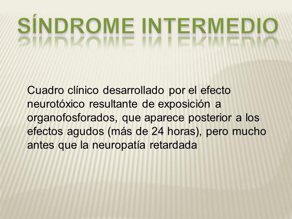 Cuadro clínico desarrollado por el efecto neurotóxico resultante de exposición a organofosforados, que aparece posterior a los efectos agudos (más de
