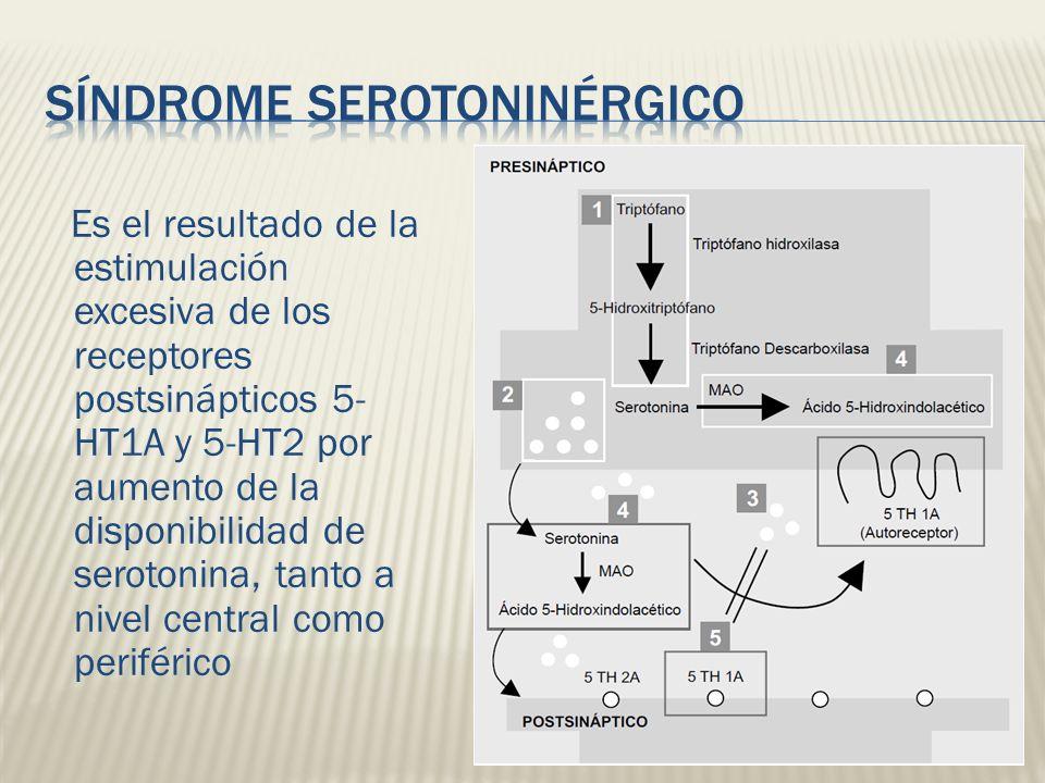 Es el resultado de la estimulación excesiva de los receptores postsinápticos 5- HT1A y 5-HT2 por aumento de la disponibilidad de serotonina, tanto a n