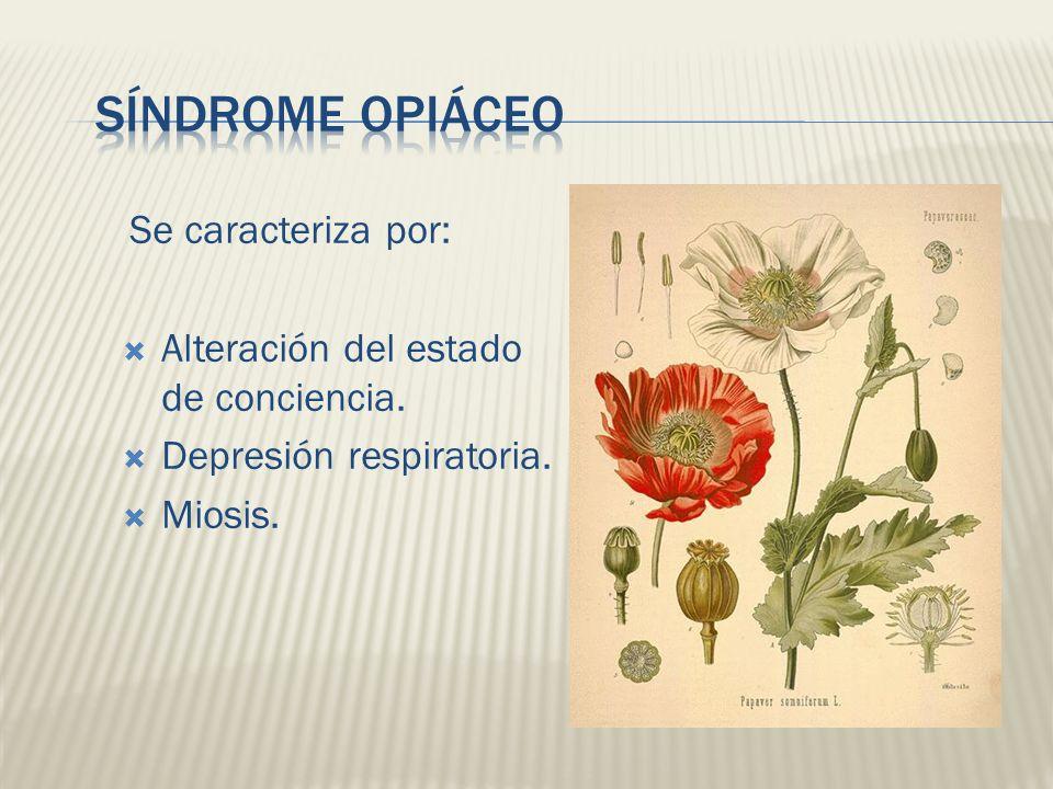 Se caracteriza por: Alteración del estado de conciencia. Depresión respiratoria. Miosis.