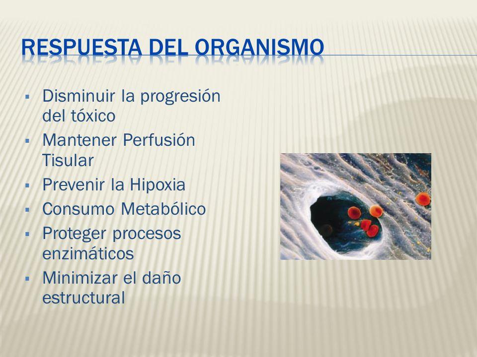 Disminuir la progresión del tóxico Mantener Perfusión Tisular Prevenir la Hipoxia Consumo Metabólico Proteger procesos enzimáticos Minimizar el daño e