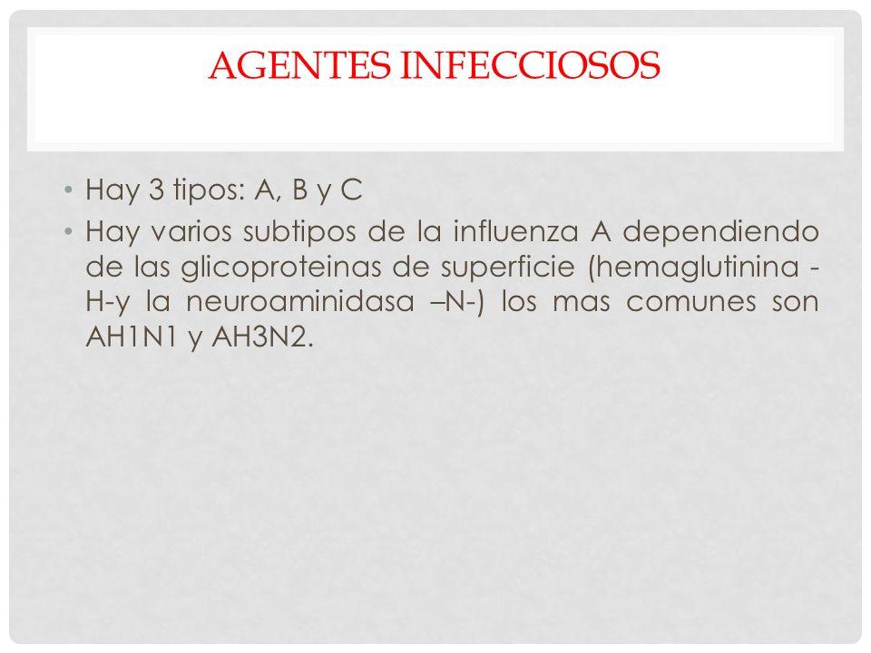 AGENTES INFECCIOSOS Hay 3 tipos: A, B y C Hay varios subtipos de la influenza A dependiendo de las glicoproteinas de superficie (hemaglutinina - H-y l