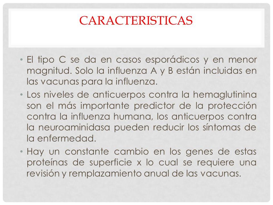 CARACTERISTICAS El tipo C se da en casos esporádicos y en menor magnitud. Solo la influenza A y B están incluidas en las vacunas para la influenza. Lo