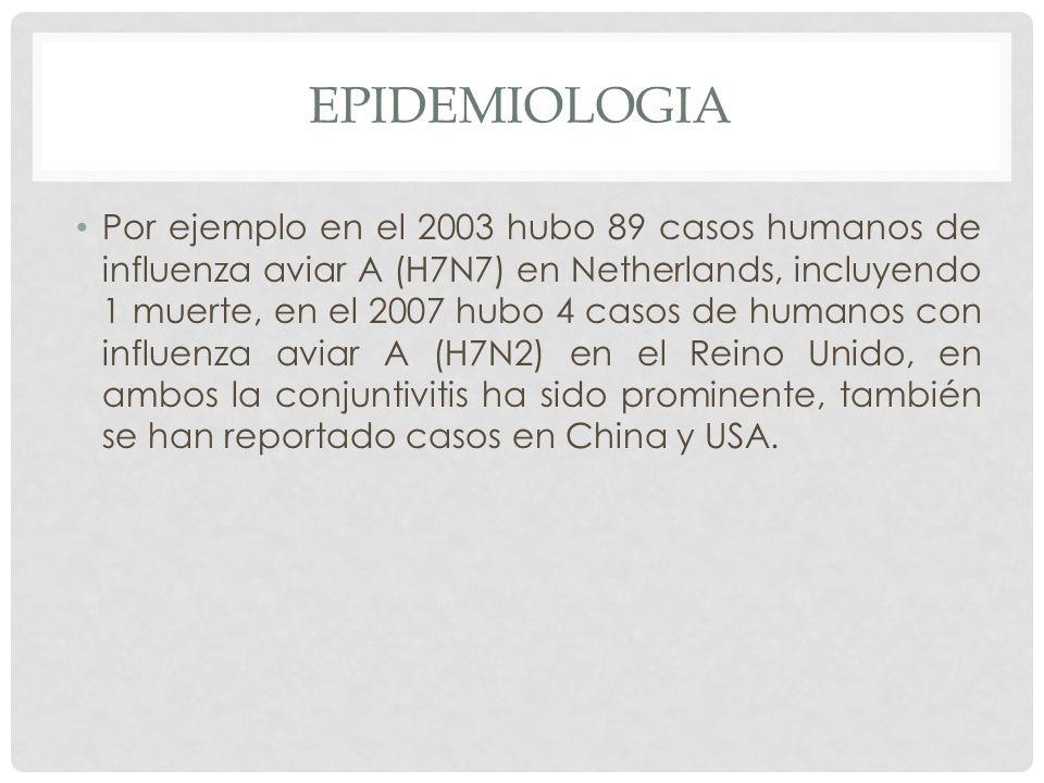 EPIDEMIOLOGIA Por ejemplo en el 2003 hubo 89 casos humanos de influenza aviar A (H7N7) en Netherlands, incluyendo 1 muerte, en el 2007 hubo 4 casos de