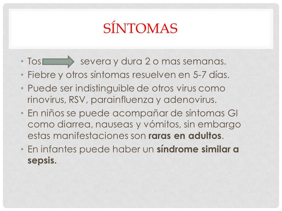 SÍNTOMAS Tos severa y dura 2 o mas semanas. Fiebre y otros síntomas resuelven en 5-7 días. Puede ser indistinguible de otros virus como rinovirus, RSV