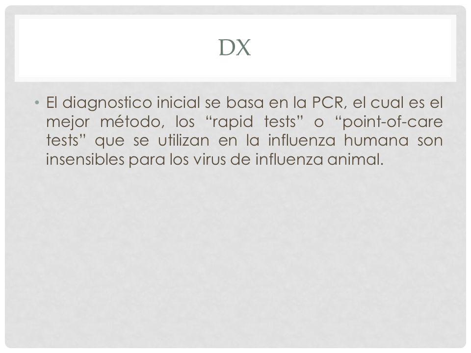 DX El diagnostico inicial se basa en la PCR, el cual es el mejor método, los rapid tests o point-of-care tests que se utilizan en la influenza humana