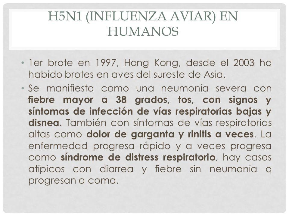 H5N1 (INFLUENZA AVIAR) EN HUMANOS 1er brote en 1997, Hong Kong, desde el 2003 ha habido brotes en aves del sureste de Asia. Se manifiesta como una neu