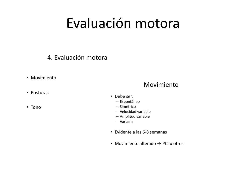 Evaluación motora
