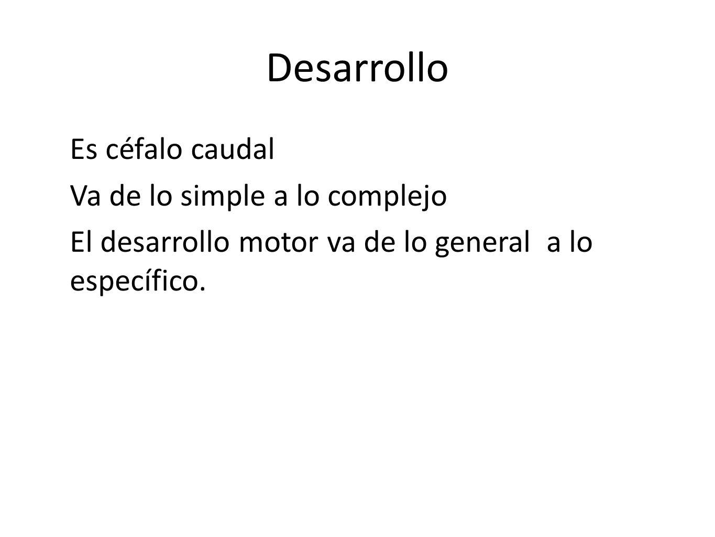 Desarrollo Es céfalo caudal Va de lo simple a lo complejo El desarrollo motor va de lo general a lo específico.