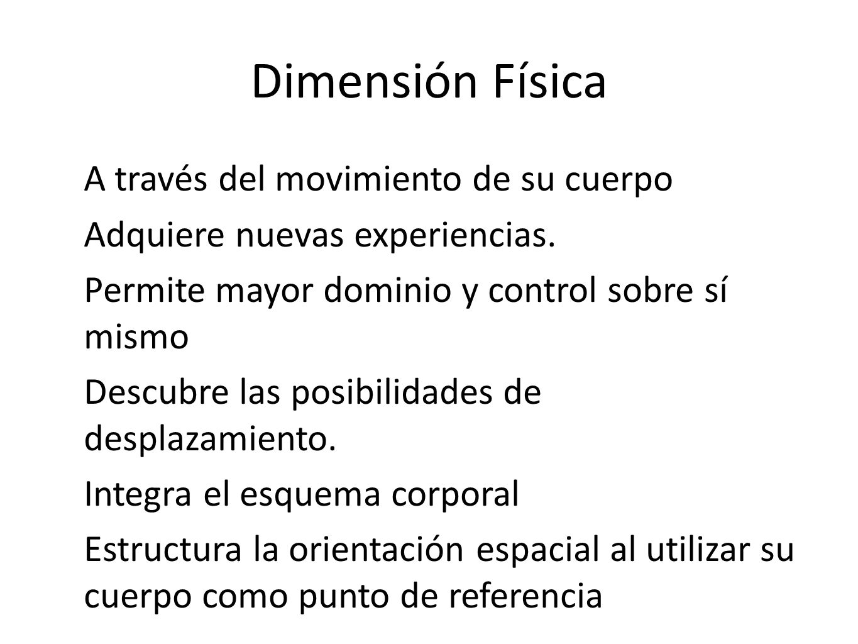 Dimensión Física A través del movimiento de su cuerpo Adquiere nuevas experiencias. Permite mayor dominio y control sobre sí mismo Descubre las posibi