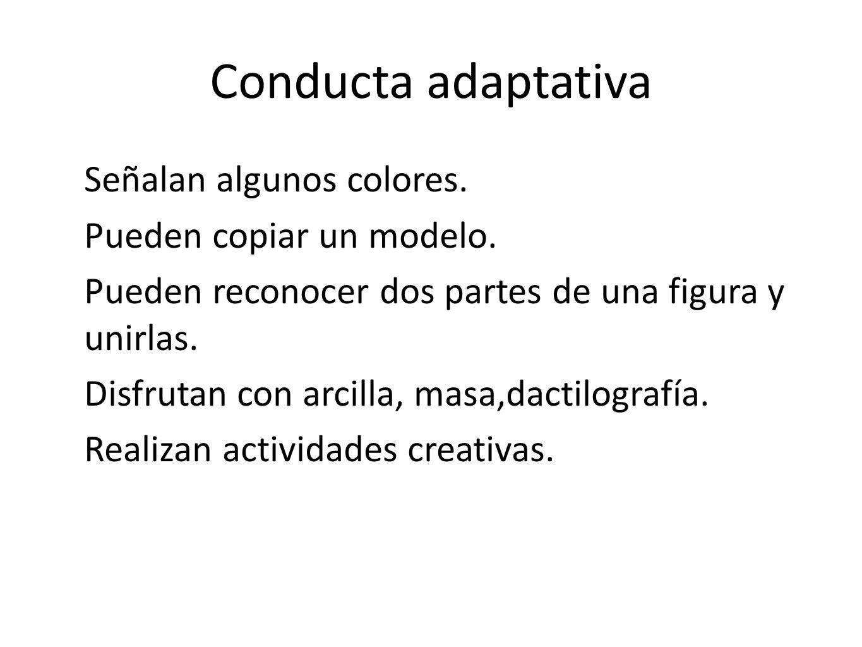 Conducta adaptativa Señalan algunos colores. Pueden copiar un modelo. Pueden reconocer dos partes de una figura y unirlas. Disfrutan con arcilla, masa