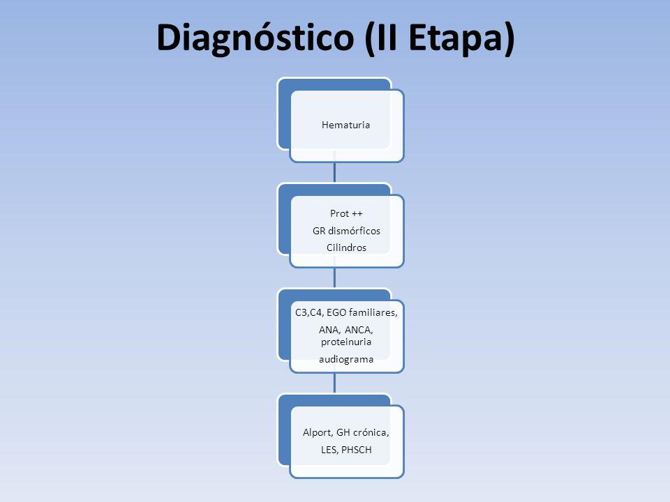 Hematuria Prot ++ GR dismórficos Cilindros C3,C4, EGO familiares, ANA, ANCA, proteinuria audiograma Alport, GH crónica, LES, PHSCH Diagnóstico (II Eta