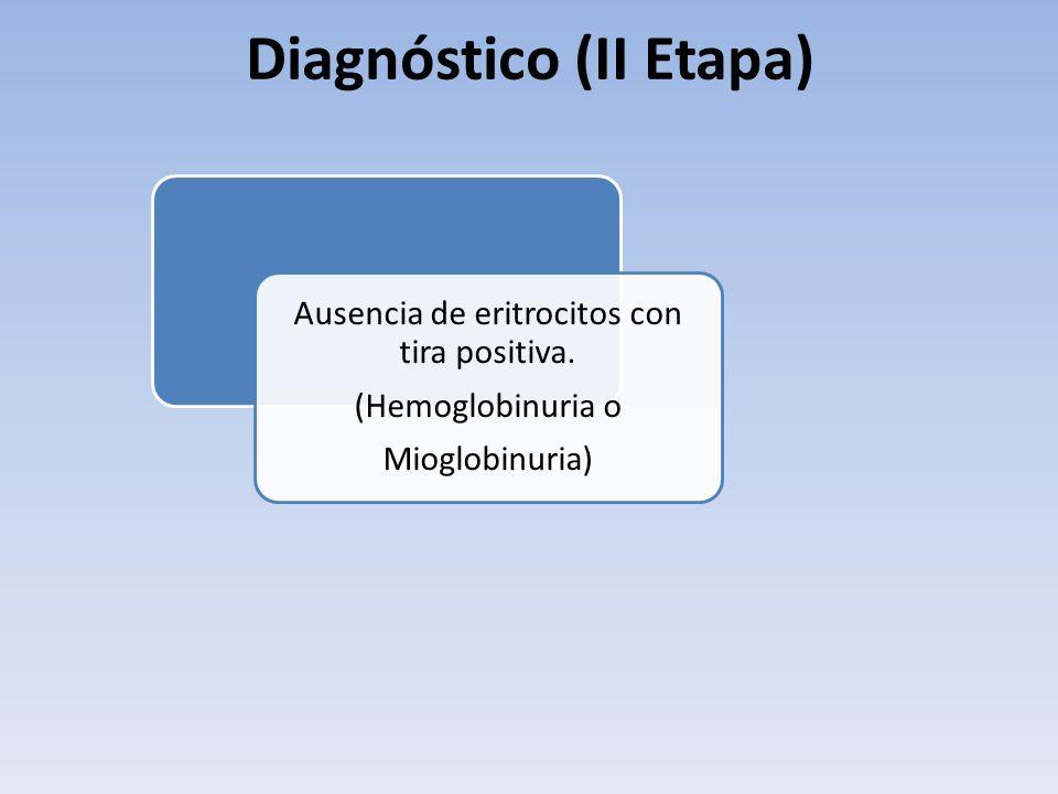 Ausencia de eritrocitos con tira positiva. (Hemoglobinuria o Mioglobinuria) Diagnóstico (II Etapa)