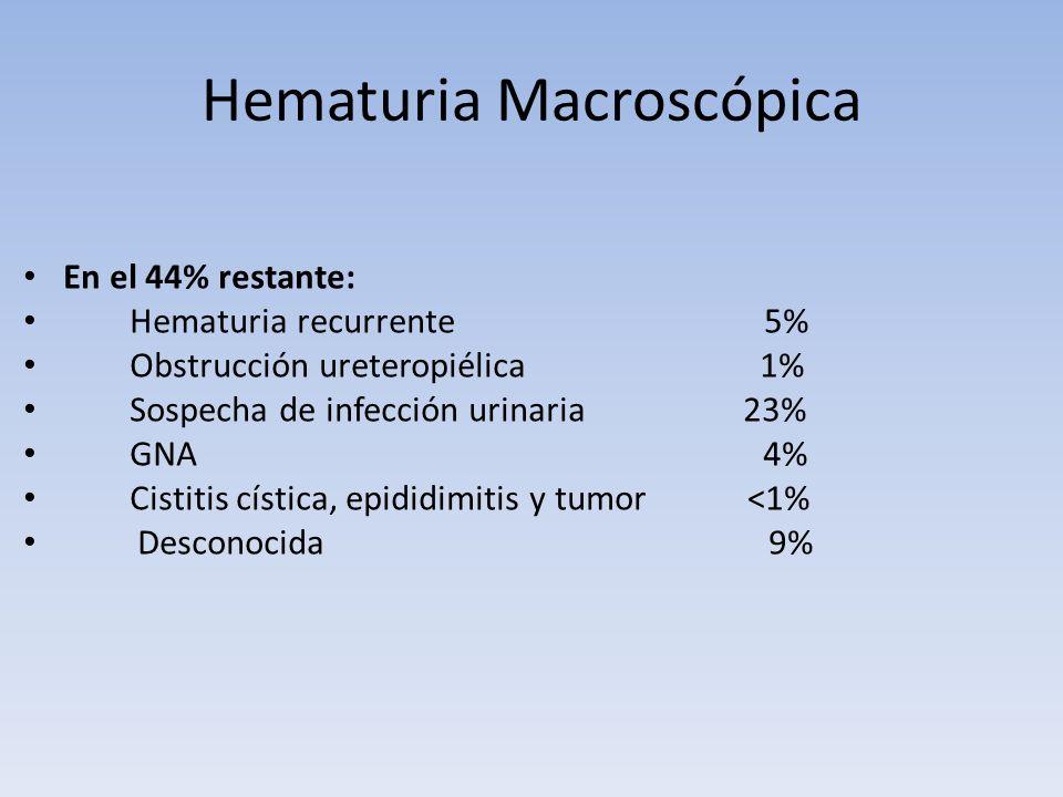 Hematuria Macroscópica En el 44% restante: Hematuria recurrente 5% Obstrucción ureteropiélica 1% Sospecha de infección urinaria 23% GNA 4% Cistitis cí