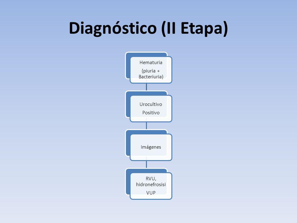 Diagnóstico (II Etapa) Hematuria (piuria + Bacteriuria) Urocultivo Positivo Imágenes RVU, hidronefrosisi VUP