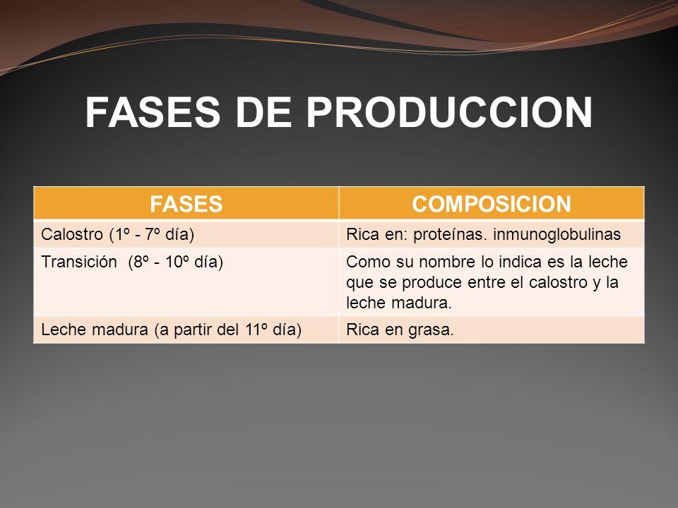 FASES DE PRODUCCION FASESCOMPOSICION Calostro (1º - 7º día)Rica en: proteínas. inmunoglobulinas Transición (8º - 10º día)Como su nombre lo indica es l