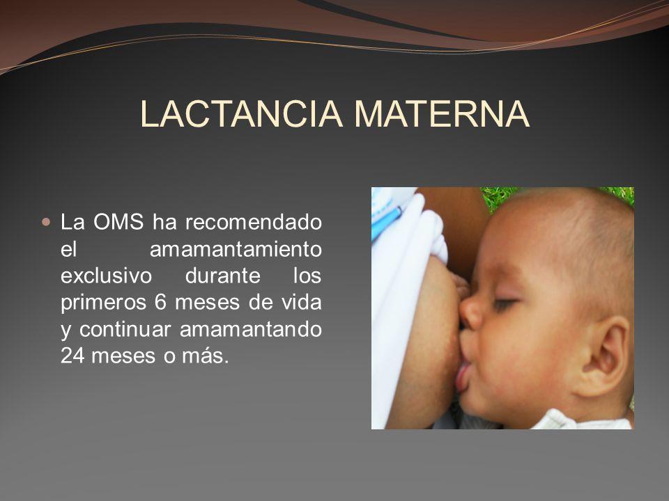 LACTANCIA MATERNA La OMS ha recomendado el amamantamiento exclusivo durante los primeros 6 meses de vida y continuar amamantando 24 meses o más.