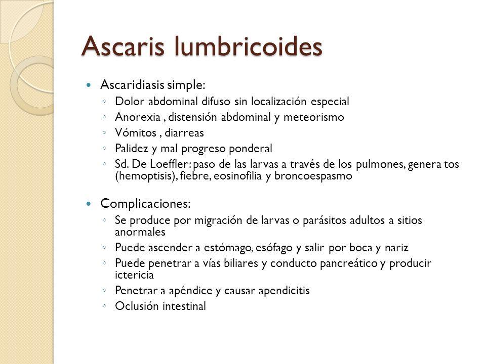 Ascaris lumbricoides Ascaridiasis simple: Dolor abdominal difuso sin localización especial Anorexia, distensión abdominal y meteorismo Vómitos, diarre