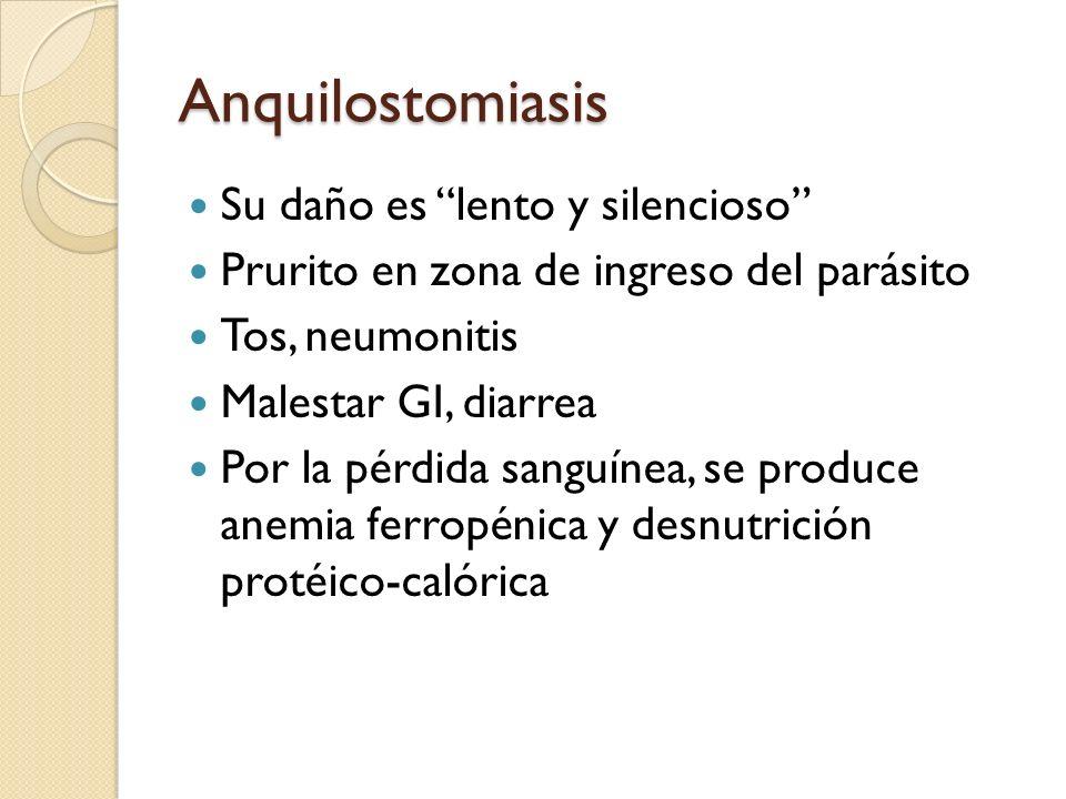 Anquilostomiasis Su daño es lento y silencioso Prurito en zona de ingreso del parásito Tos, neumonitis Malestar GI, diarrea Por la pérdida sanguínea,