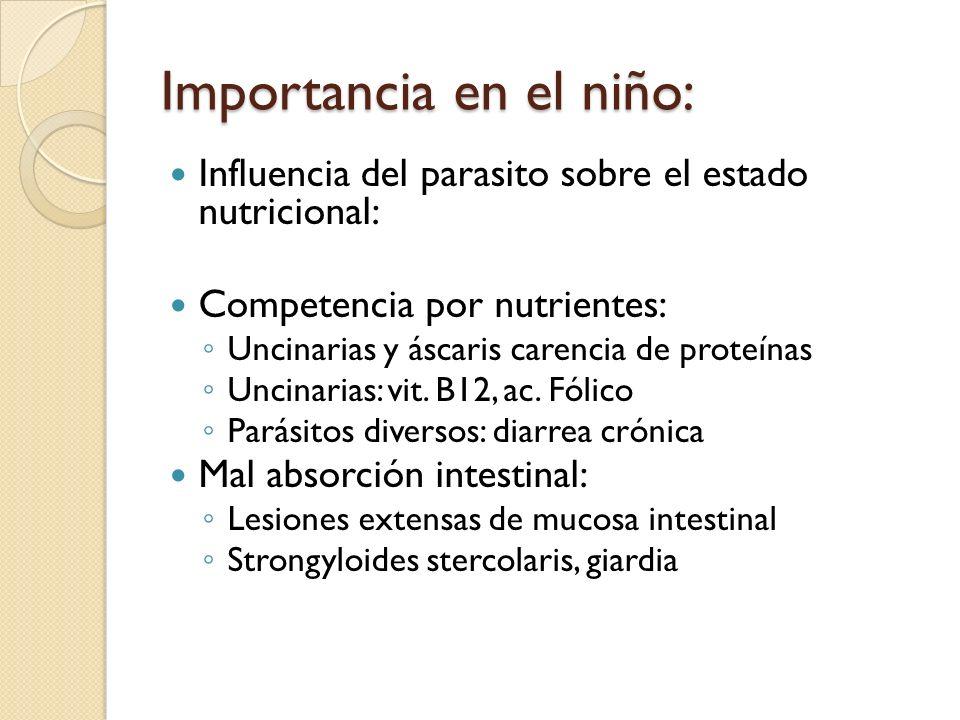 Importancia en el niño: Influencia del parasito sobre el estado nutricional: Competencia por nutrientes: Uncinarias y áscaris carencia de proteínas Un