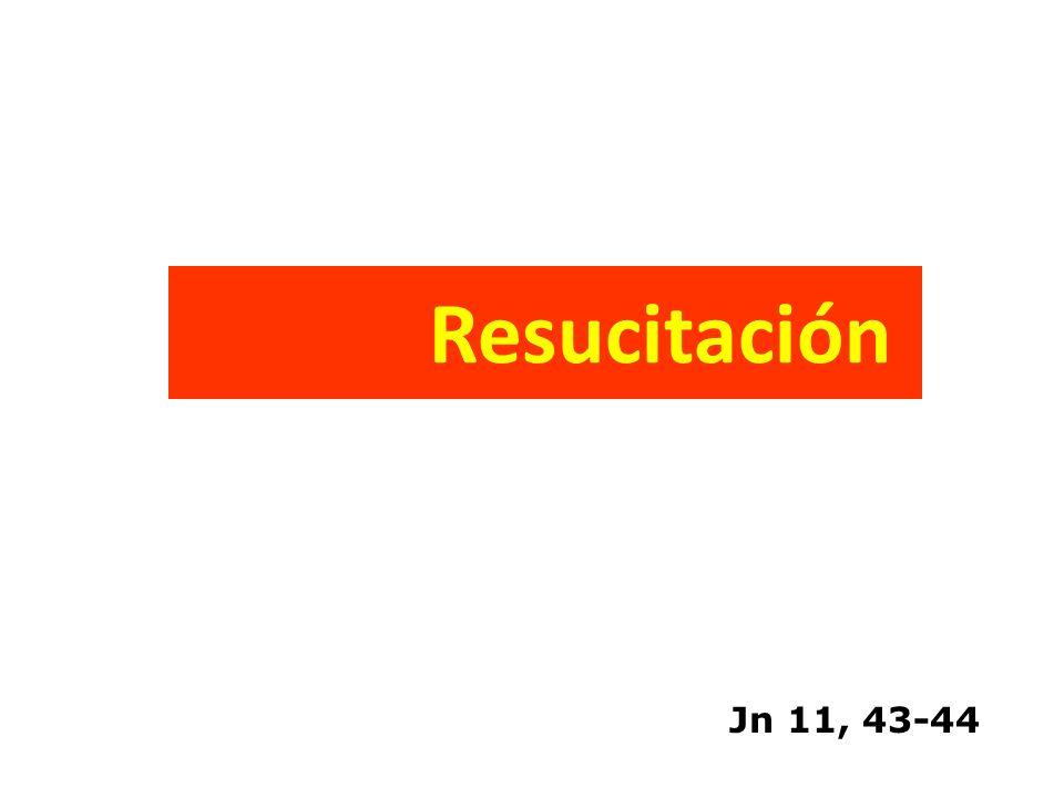 Tacto Rectal Inspección del periné Tono esfinteriano Integridad de pared rectal Sangrado rectal Próstata - movilidad y posición