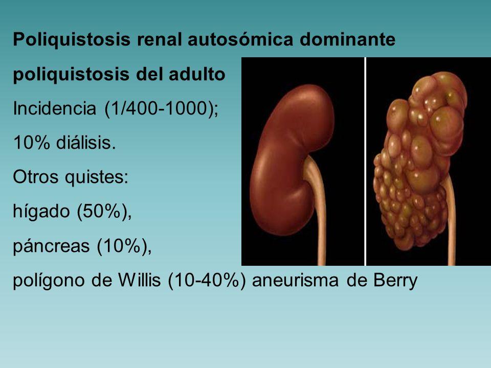Poliquistosis renal autosómica dominante Clínica: al nacimiento no IR; quistes crecen y atrofian parenquima renal sano; diálisis entre 40-60 años Complicaciones: HTA (30% niños; 60% adultos) renina / eritropoyetina (mejor valor de hemoglobina)