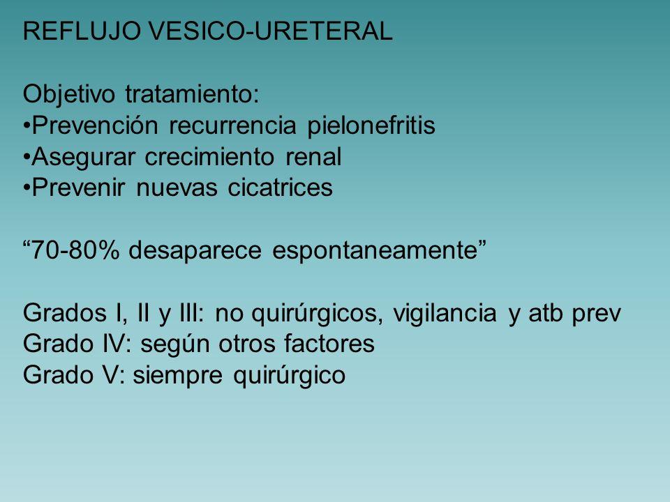 DUPLICIDAD URETERAL 1/500 individuos Desarrollo de 2 yemas ureterales 80% sin transcendencia patológica Asociado Reflujo vesico-ureteral 60% Ureterocele 10% Ectopia 2%