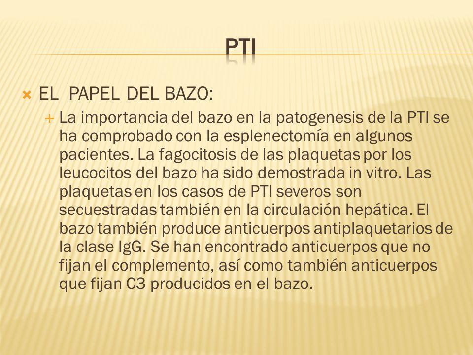 EL PAPEL DEL BAZO: La importancia del bazo en la patogenesis de la PTI se ha comprobado con la esplenectomía en algunos pacientes. La fagocitosis de l