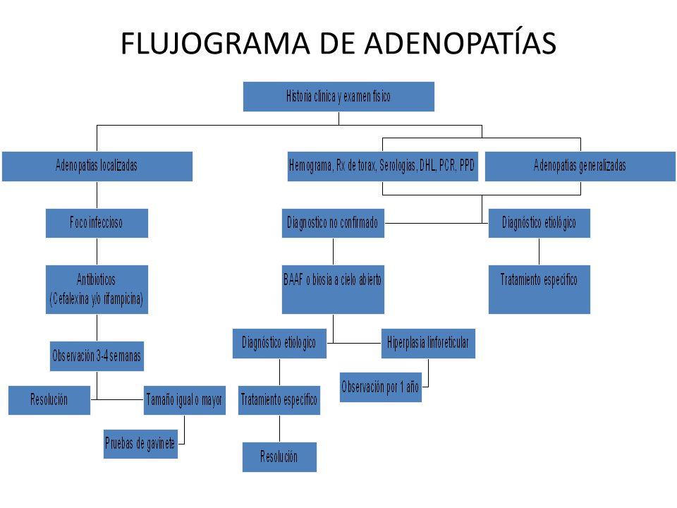 FLUJOGRAMA DE ADENOPATÍAS