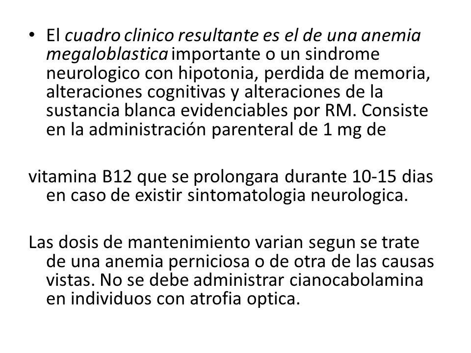 El cuadro clinico resultante es el de una anemia megaloblastica importante o un sindrome neurologico con hipotonia, perdida de memoria, alteraciones c