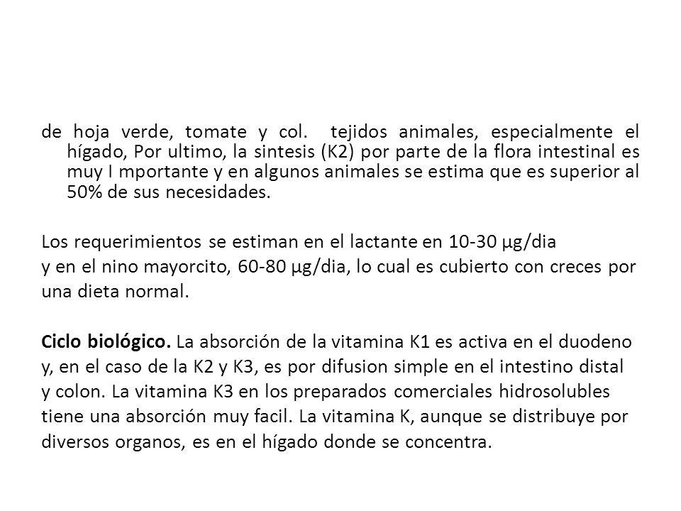de hoja verde, tomate y col. tejidos animales, especialmente el hígado, Por ultimo, la sintesis (K2) por parte de la flora intestinal es muy I mportan