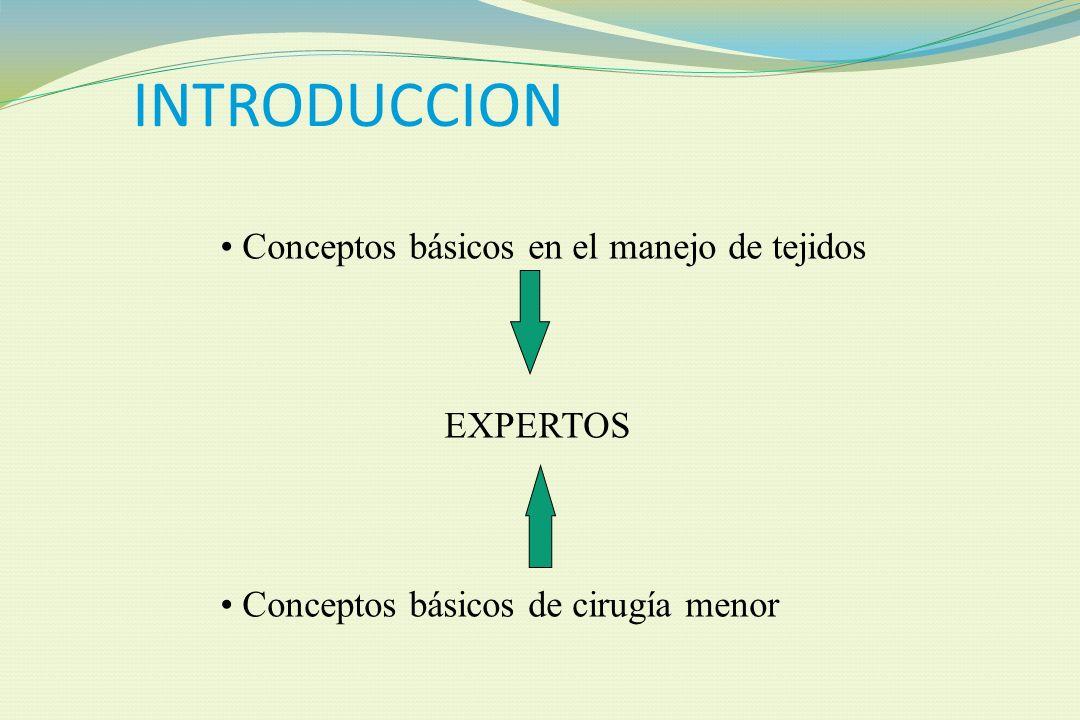 Dr. Allan Pérez Baltodano JEFE SERVICIO DE CIRUGIA PLASTICA Y RECONSTRUCTIVA HOSPITAL DR. RAFAEL A. CALDERON G.