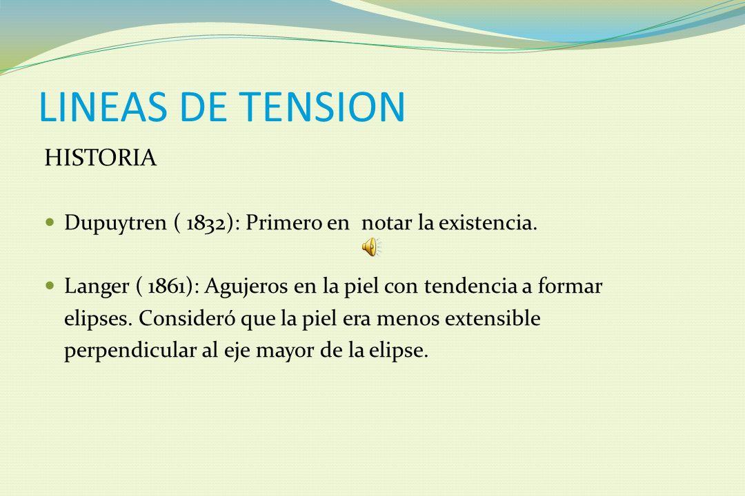 INTRODUCCION Conceptos básicos en el manejo de tejidos EXPERTOS Conceptos básicos de cirugía menor