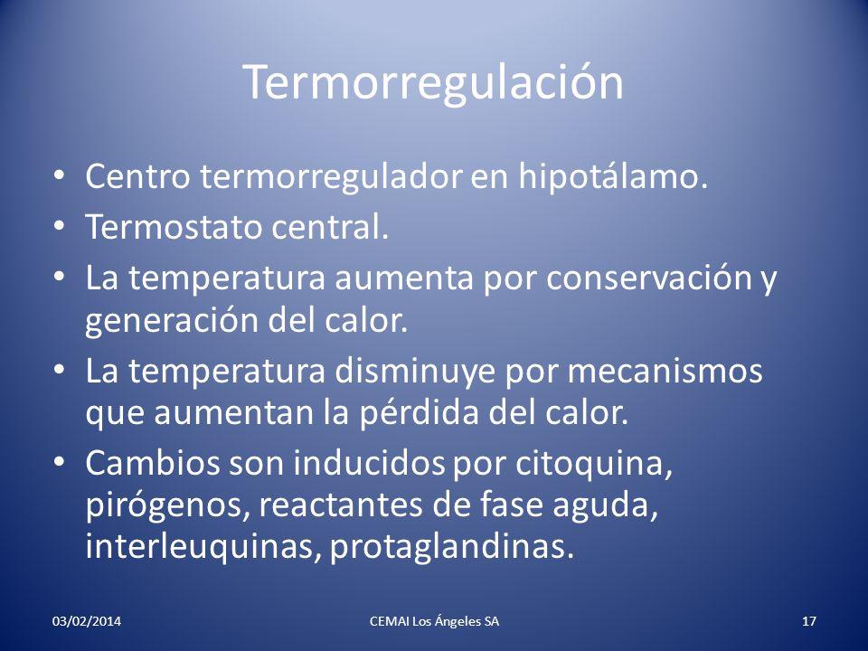 Termorregulación Centro termorregulador en hipotálamo. Termostato central. La temperatura aumenta por conservación y generación del calor. La temperat