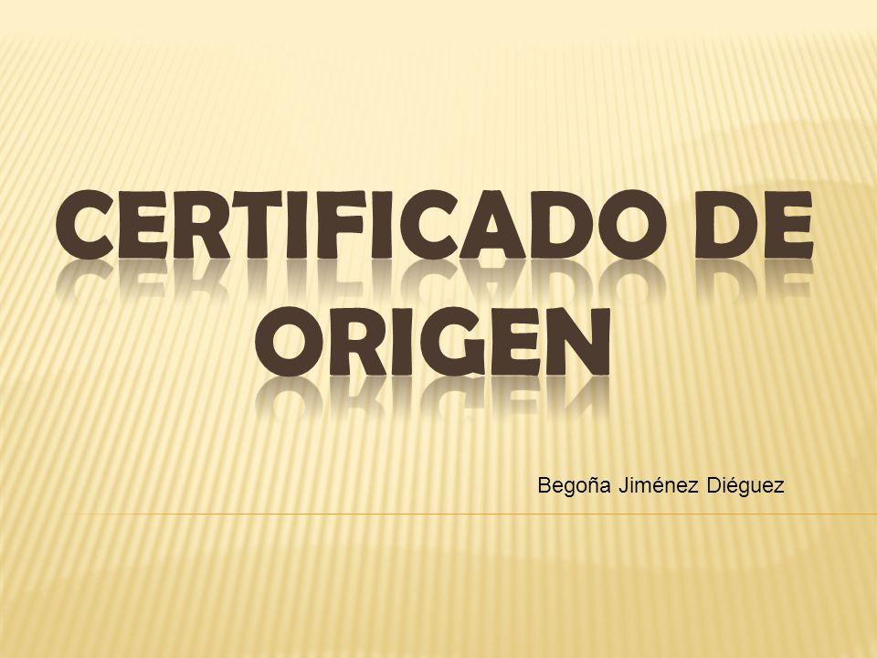 Begoña Jiménez Diéguez