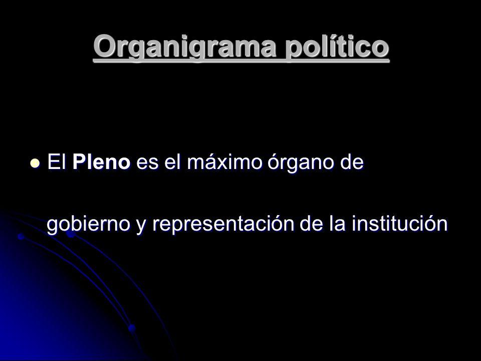 El Comité Ejecutivo es el órgano de gobierno permanente de gestión, administración y propuesta de la Cámara, y se responsabiliza de la dirección institucional de la entidad.