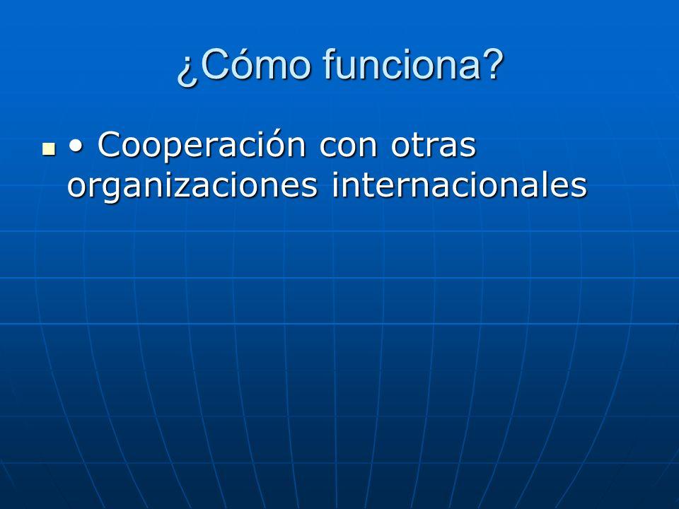 ¿Cómo funciona? Cooperación con otras organizaciones internacionales Cooperación con otras organizaciones internacionales