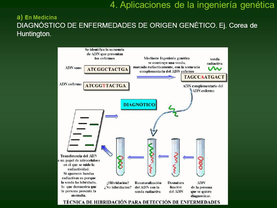 a) En Medicina DIAGNÓSTICO DE ENFERMEDADES DE ORIGEN GENÉTICO. Ej. Corea de Huntington. 4. Aplicaciones de la ingeniería genética