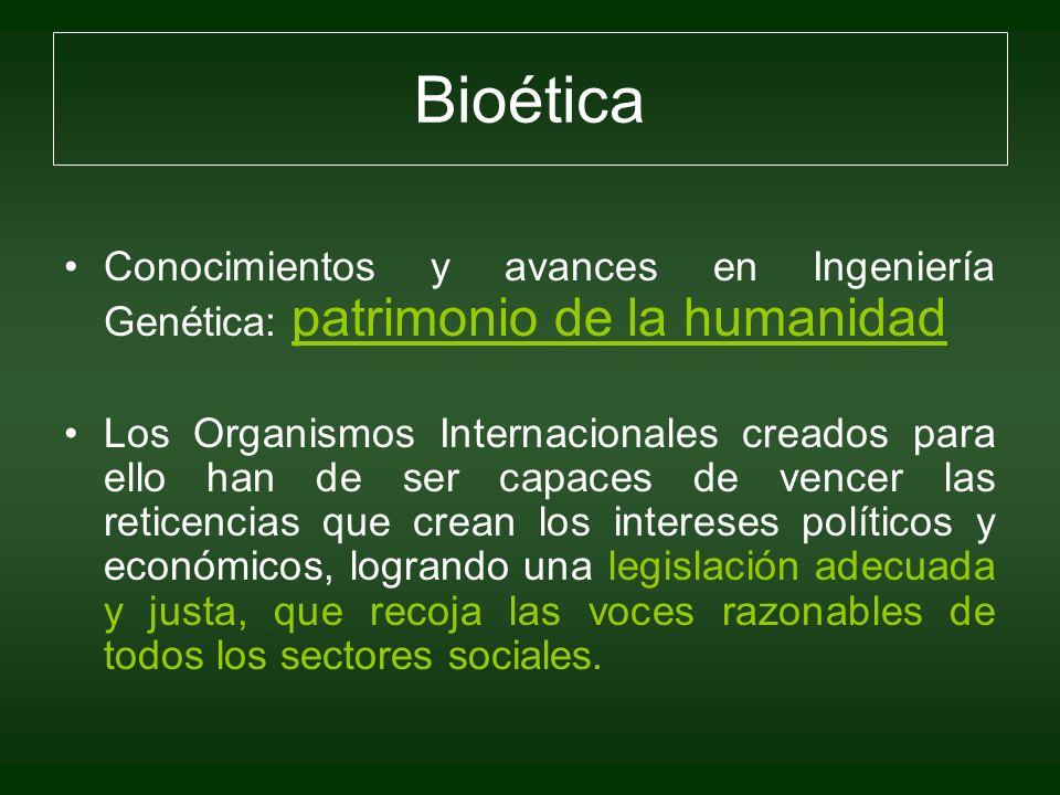 Bioética Conocimientos y avances en Ingeniería Genética: patrimonio de la humanidad Los Organismos Internacionales creados para ello han de ser capace