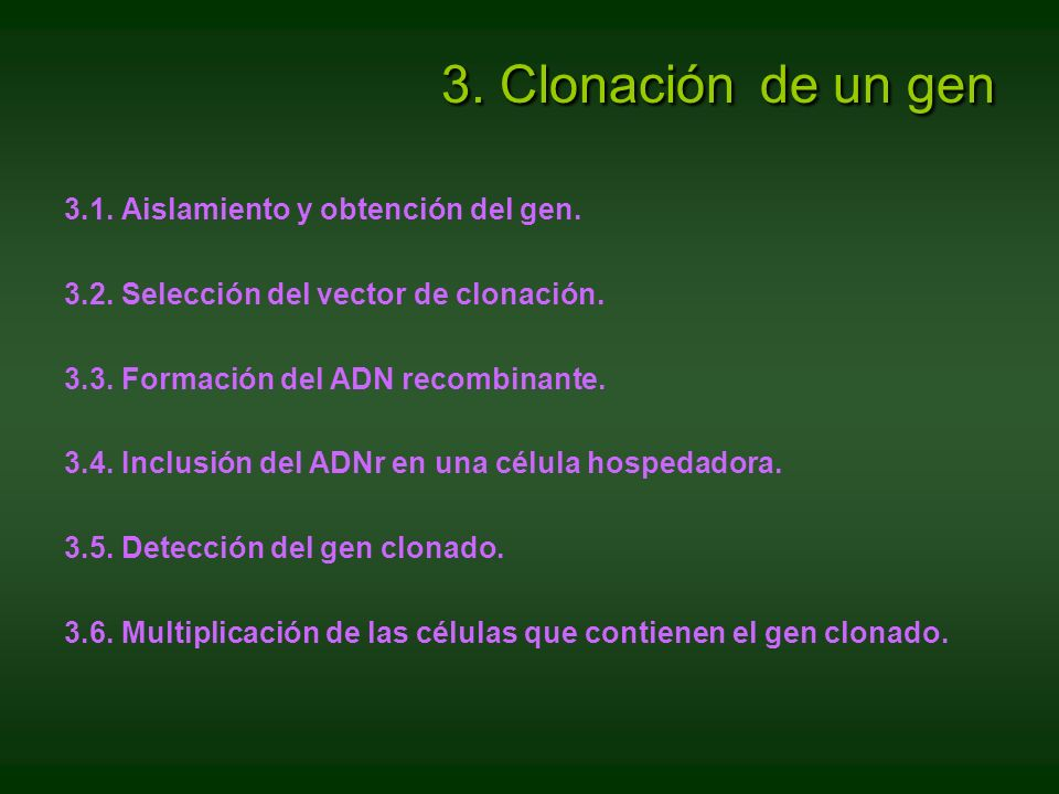 3. Clonación de un gen 3.1. Aislamiento y obtención del gen. 3.2. Selección del vector de clonación. 3.3. Formación del ADN recombinante. 3.4. Inclusi