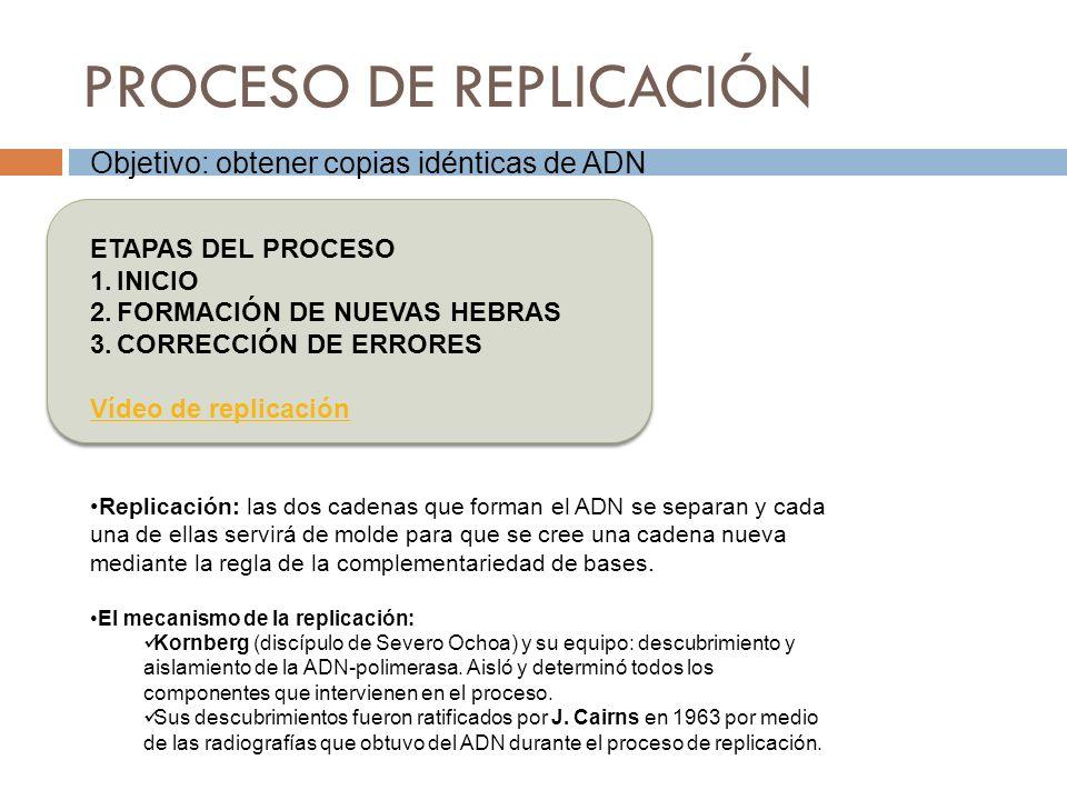 PROCESO DE REPLICACIÓN Objetivo: obtener copias idénticas de ADN ETAPAS DEL PROCESO 1.INICIO 2.FORMACIÓN DE NUEVAS HEBRAS 3.CORRECCIÓN DE ERRORES Víde