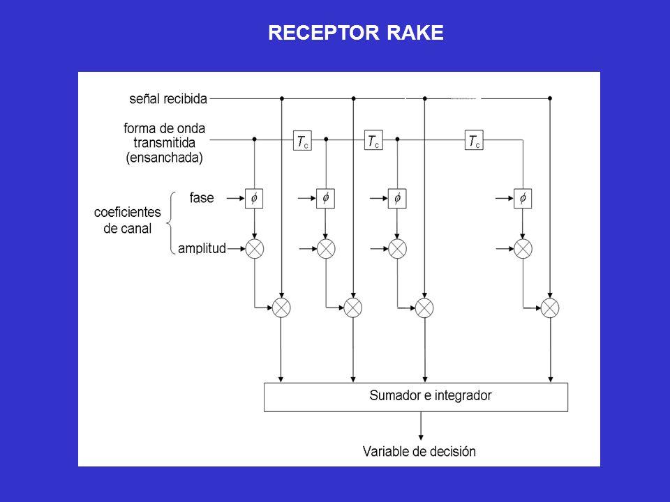 RECEPTOR RAKE