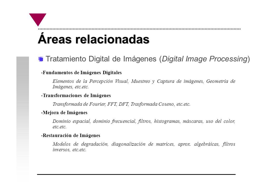 Áreas relacionadas Tratamiento Digital de Imágenes (Digital Image Processing) -Compresión de Imágenes Estándares, teoría de la información, compresión con/sin pérdida de información, etc.etc.