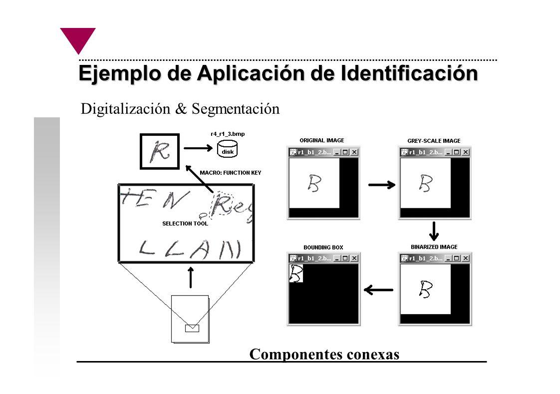 Ejemplo de Aplicación de Identificación Digitalización & Segmentación Componentes conexas