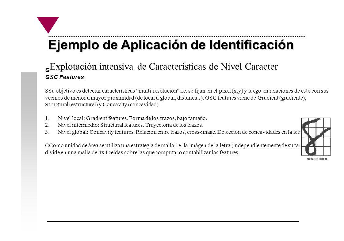 Ejemplo de Aplicación de Identificación Explotación intensiva de Características de Nivel Caracter G GSC Features SSu objetivo es detectar característ