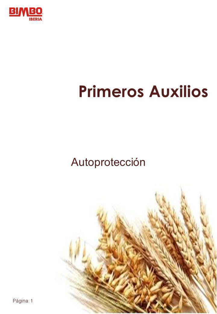Página: 2 Autoprotección Autoprotección: Sistema de prevención de accidentes.