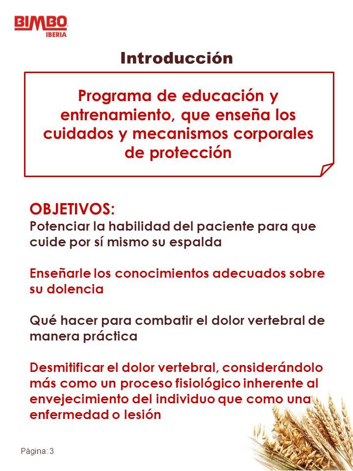 Página: 3 Introducción Programa de educación y entrenamiento, que enseña los cuidados y mecanismos corporales de protección OBJETIVOS: Potenciar la ha